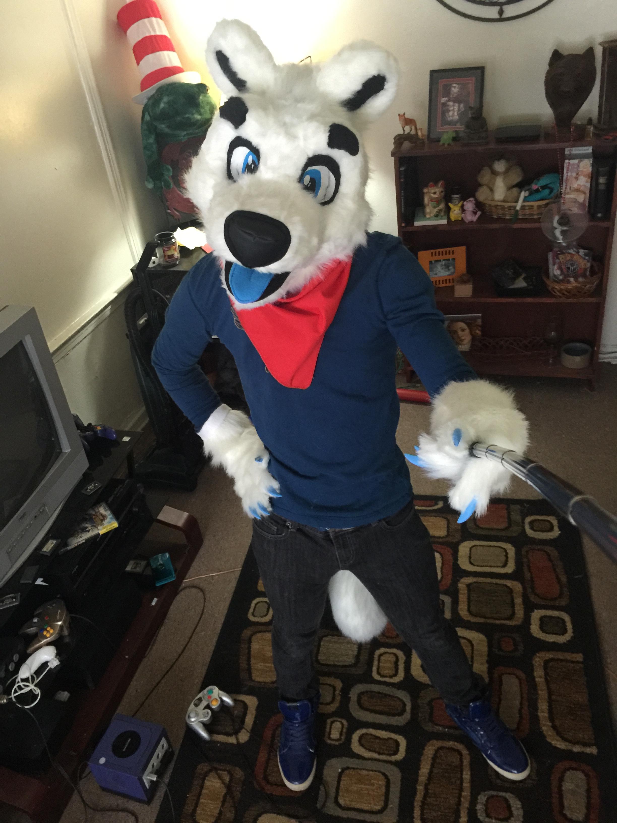 Pherric - The Polar Bear/Arctic Wolf Hybrid