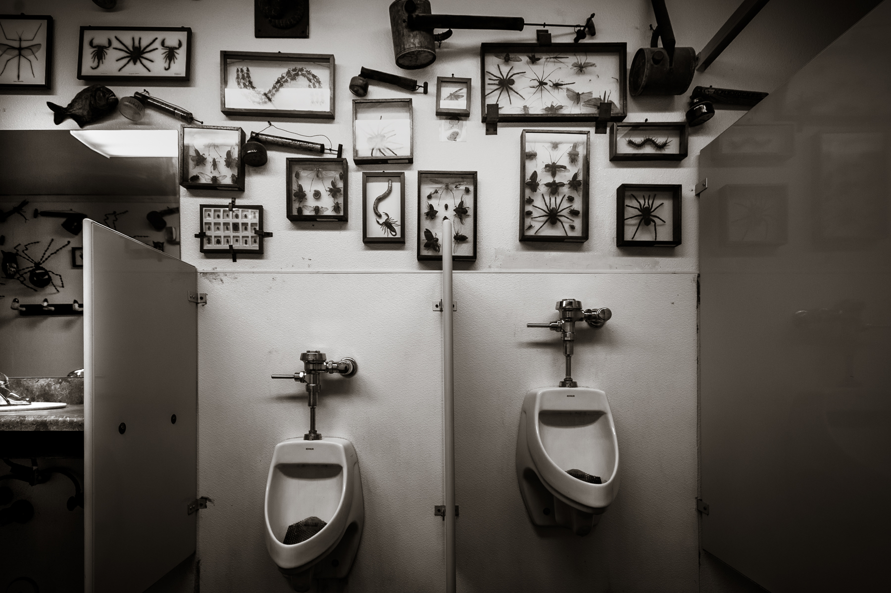 Men's Room  Holbrook, AZ 2016