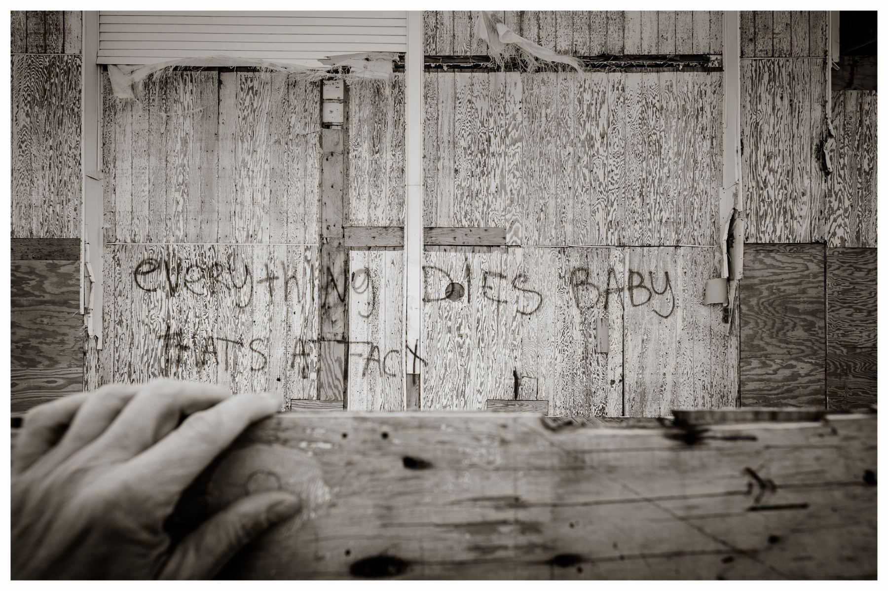 """""""...but maybe everything that dies, someday comes back"""" Hurricane Sandy aftermath, Asbury Park, NJ  2013"""