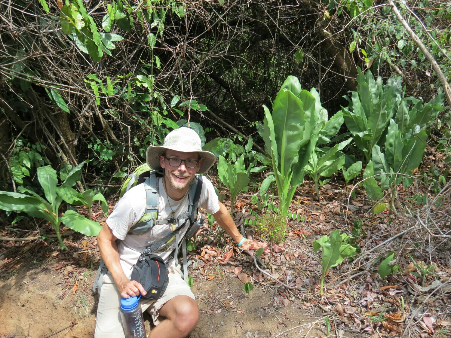 Enjoying some huge Scadoxus near the start of the Sanje Falls hike at the Udzungwa Mountains National Park.