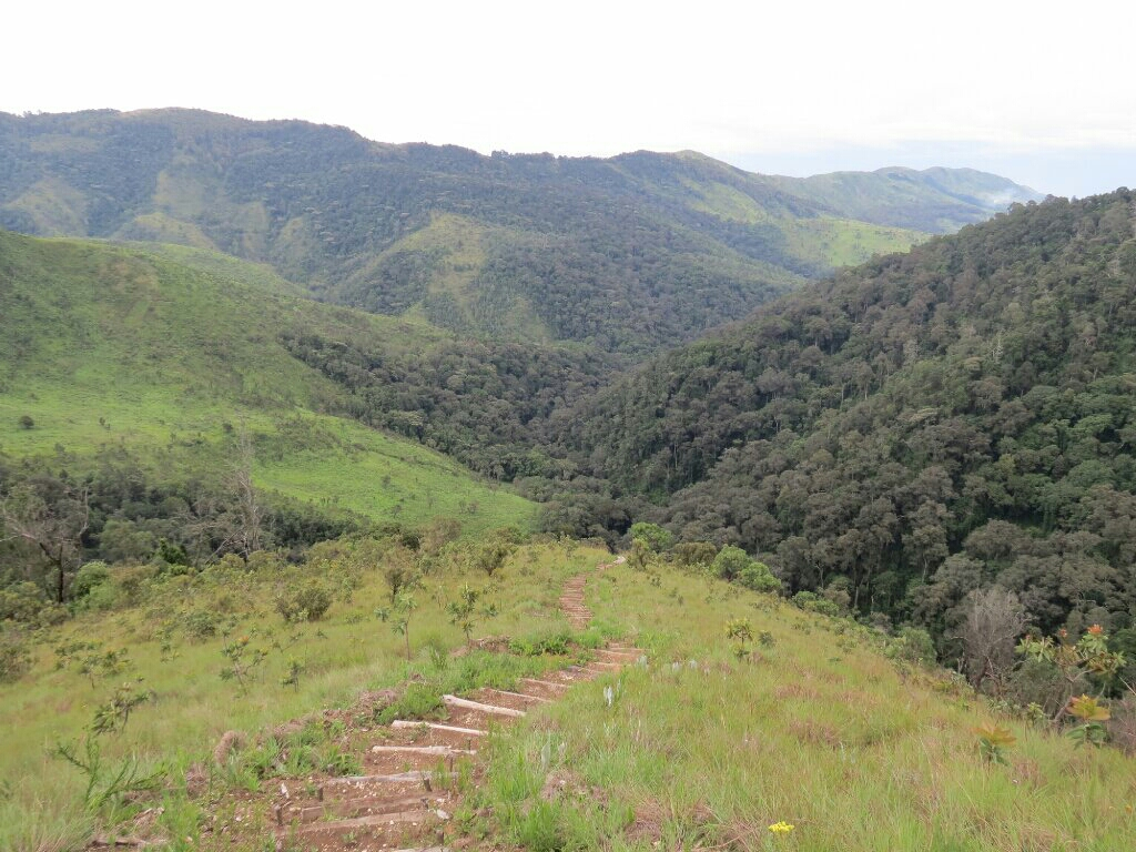 The very steep hike to the waterfall.