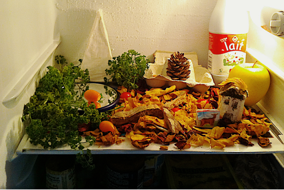 fall_fridge.jpg