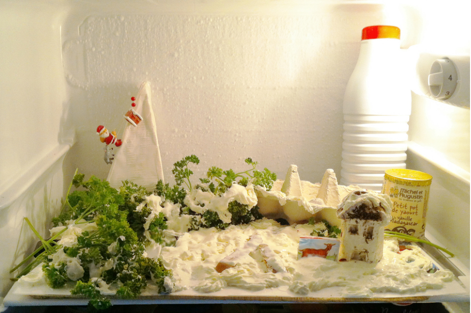 winter_fridge.jpg