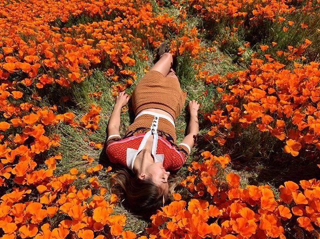 Alice in Wonderland or Devyn in La La Land 🍄