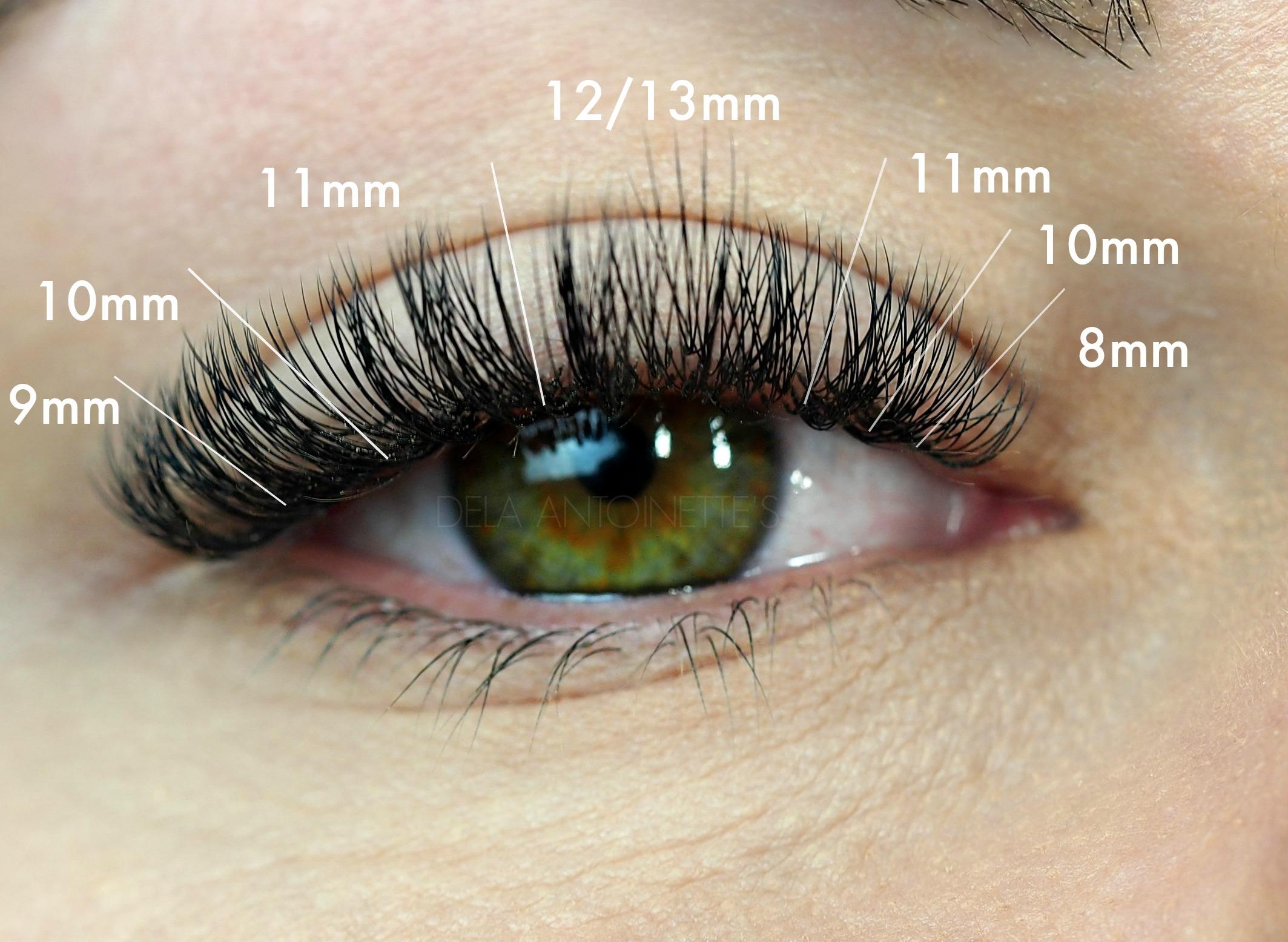 C Curl Lashes in .10 2-3D