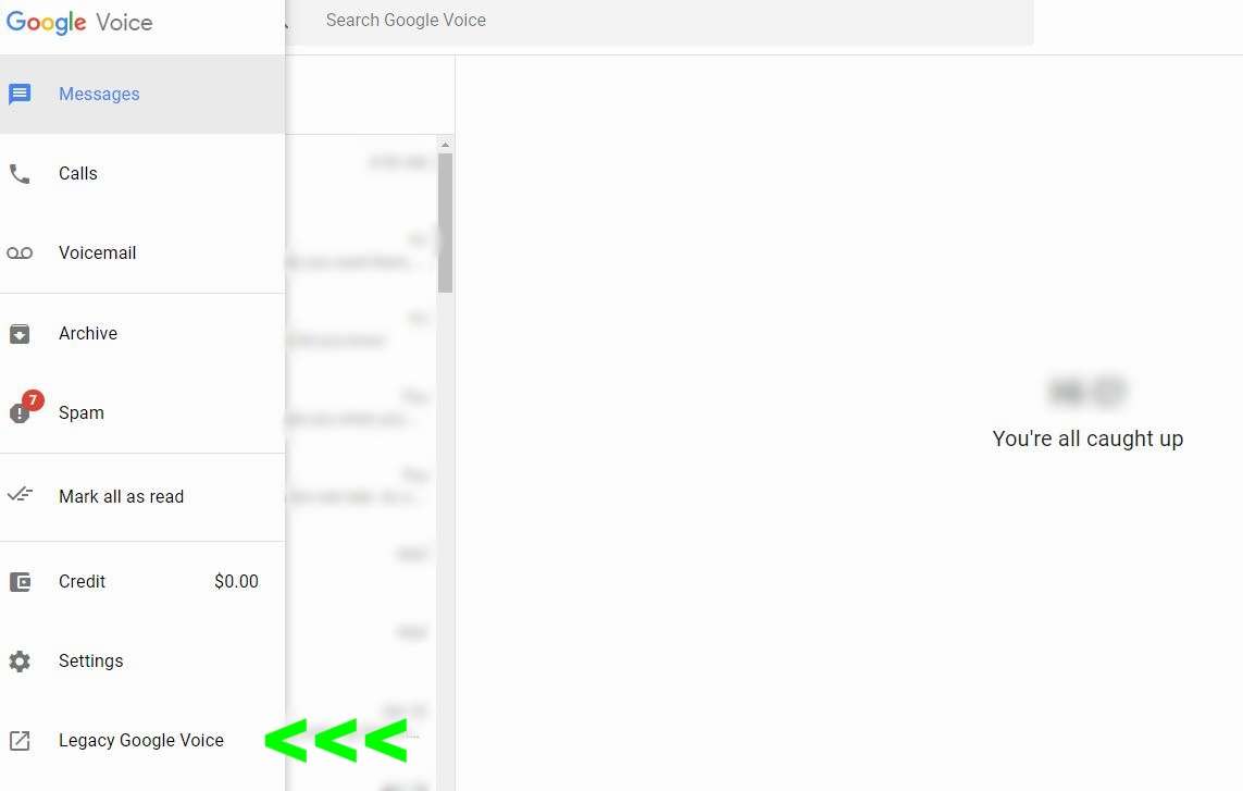 Google Voice Tutorial Step 6.JPG