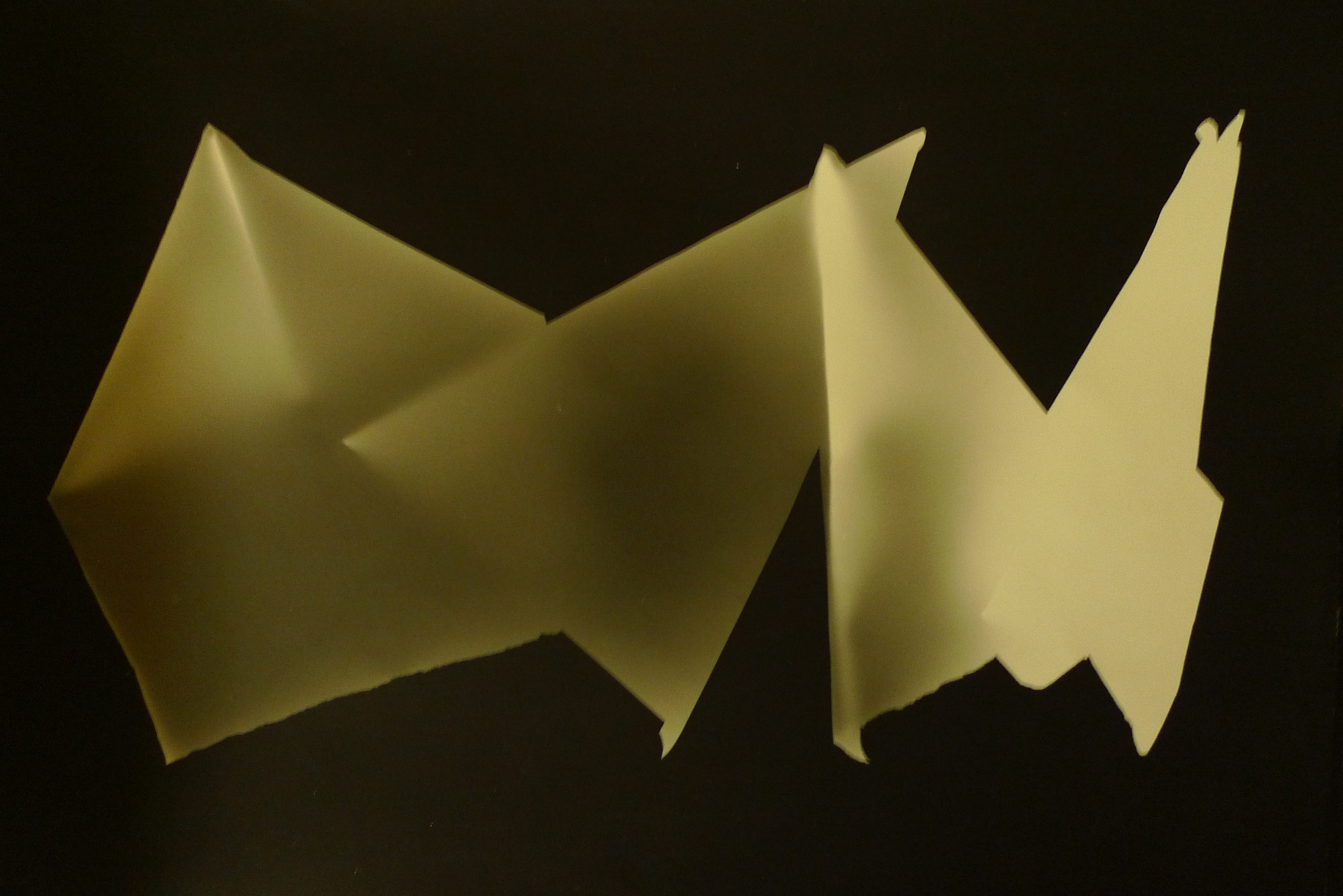 Folded Paper Photograms