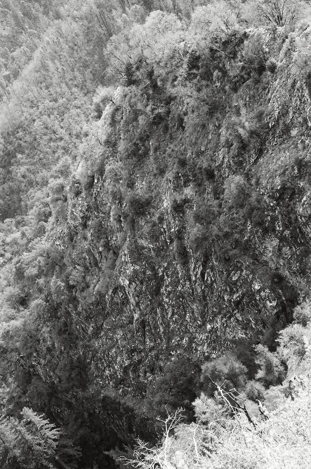 Big Sur, s ilver print,2014