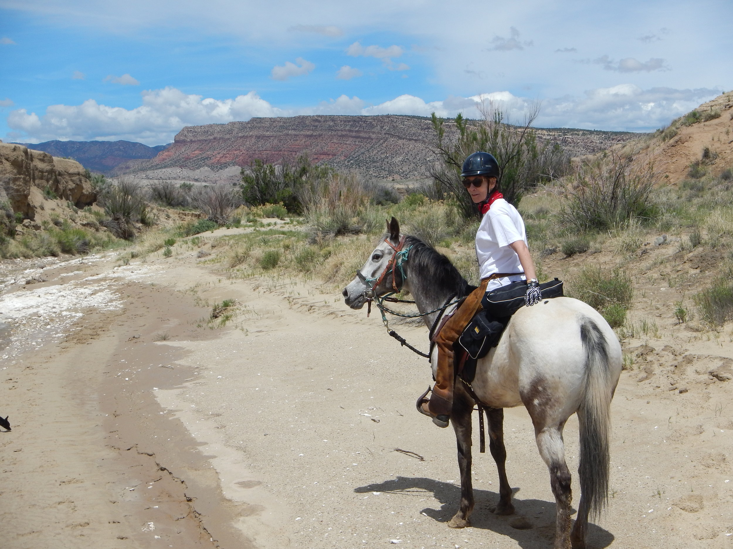 Mel and Justyn are skilled horsewomen who have transformed rescue horses that once suffered neglect and abuse into trusted, willing trail companions. - ~ SIRI