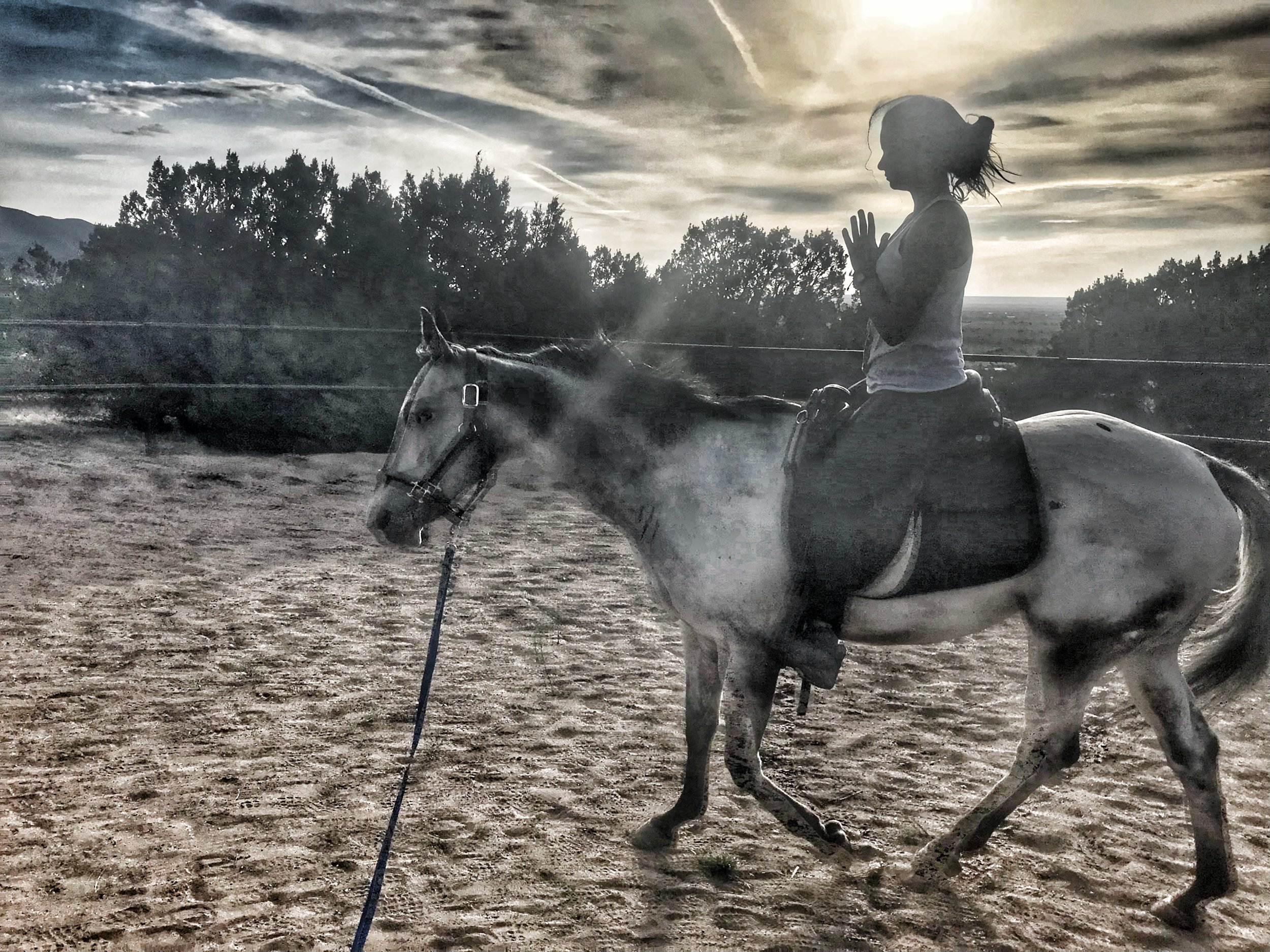 Maintaining a connection with your horse as well as an awareness with your body was such an amazing and humbling experience. - - Sam