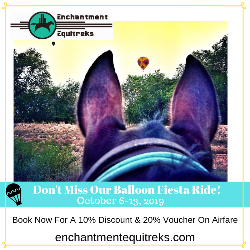 Don't Miss Our Balloon Fiesta Ride!.png