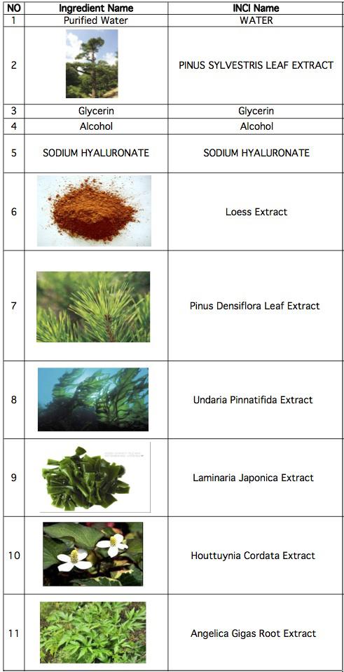 Worksheet in Bloom Ingredients-2 copy.jpg