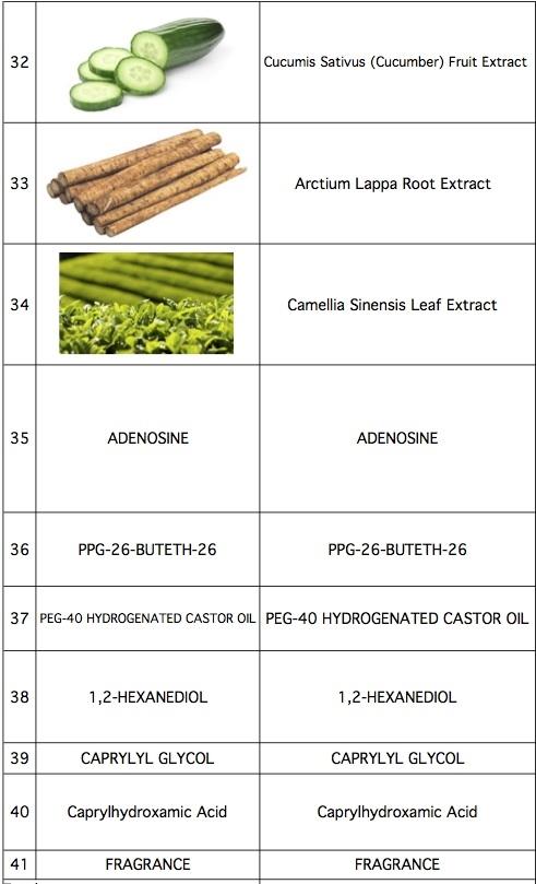 Worksheet in Bloom Ingredients-5.jpg