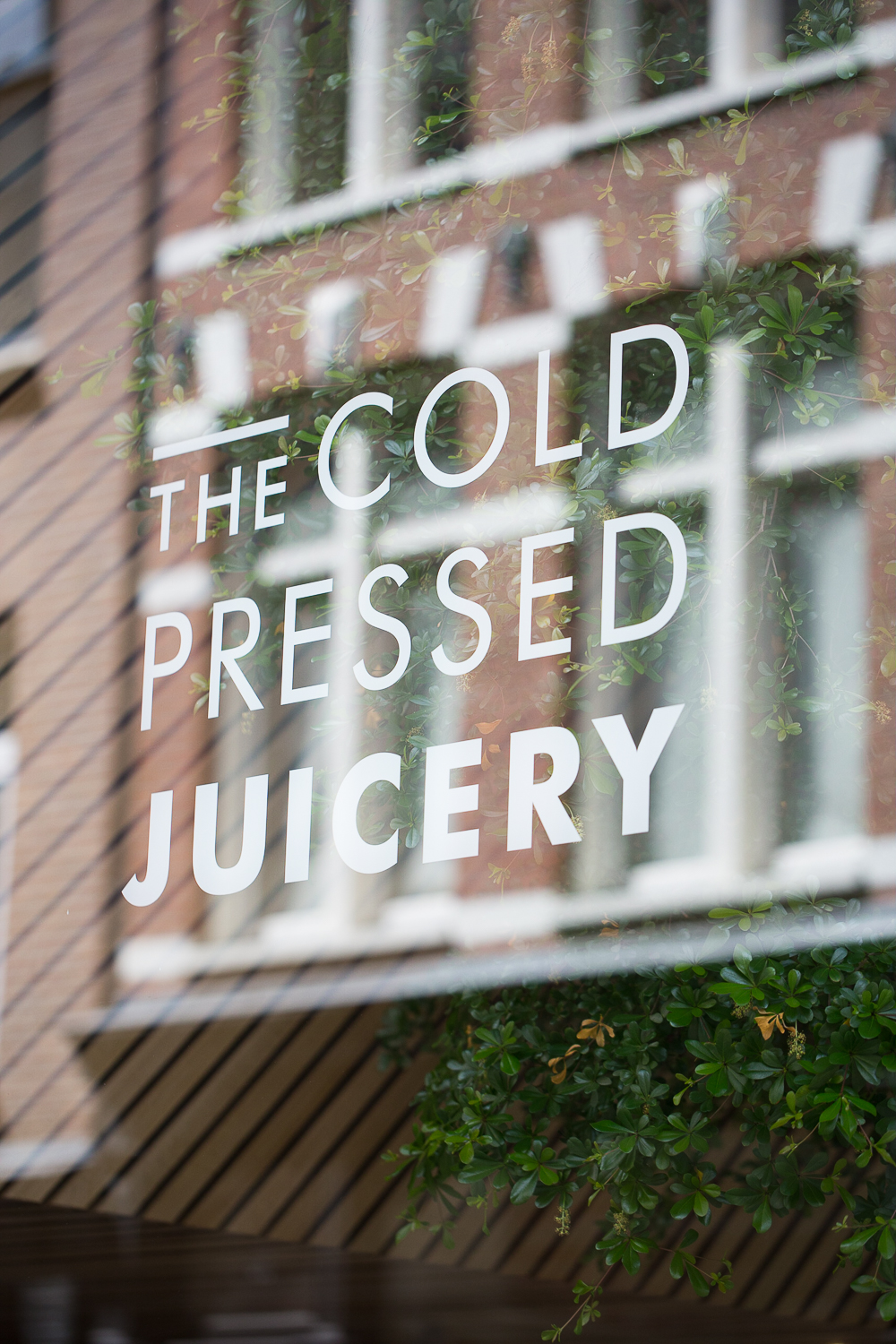 cold pressed juicery