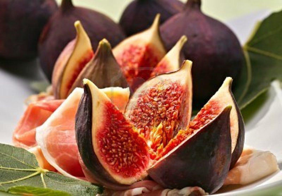 figs3.jpg