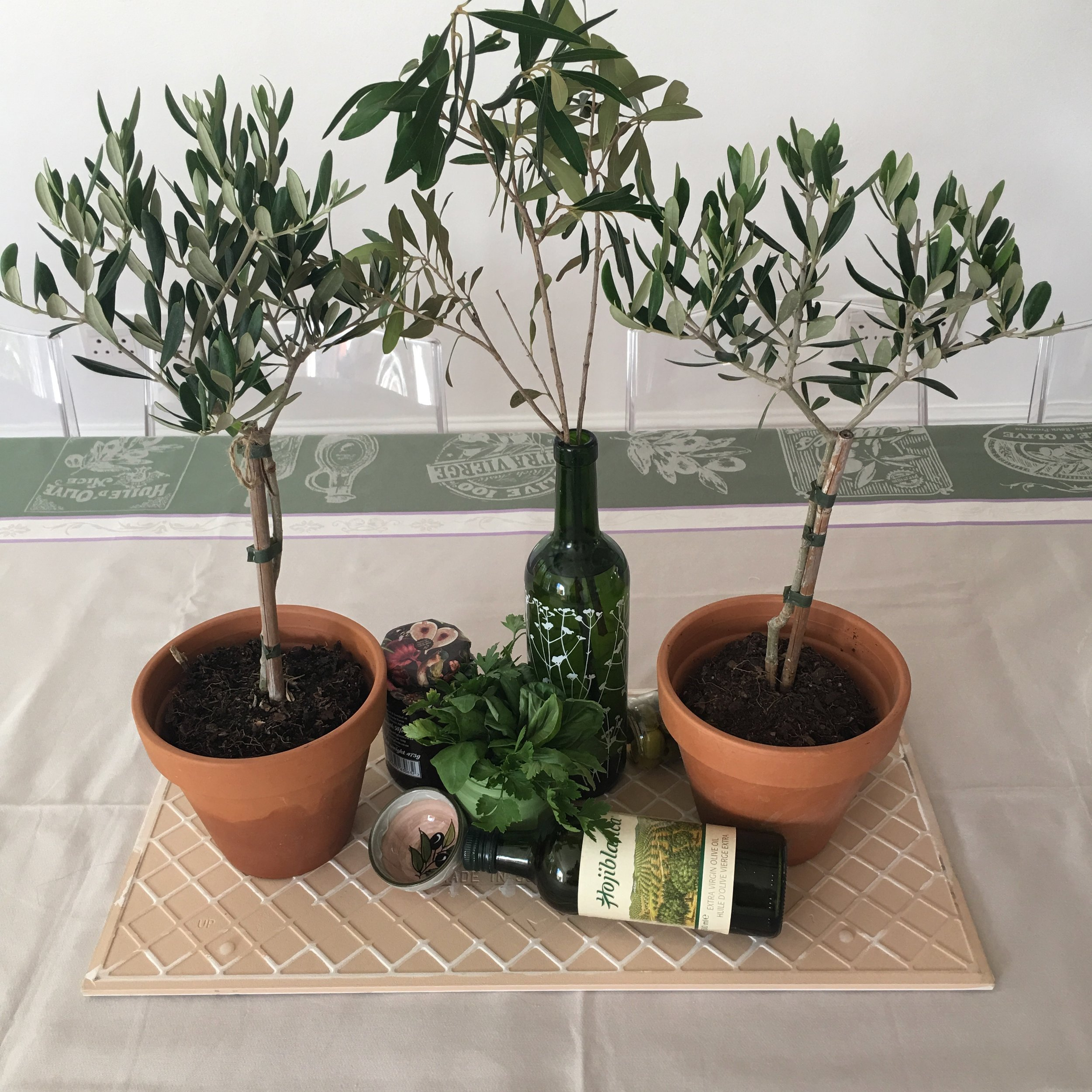 Olive plants used as table decor