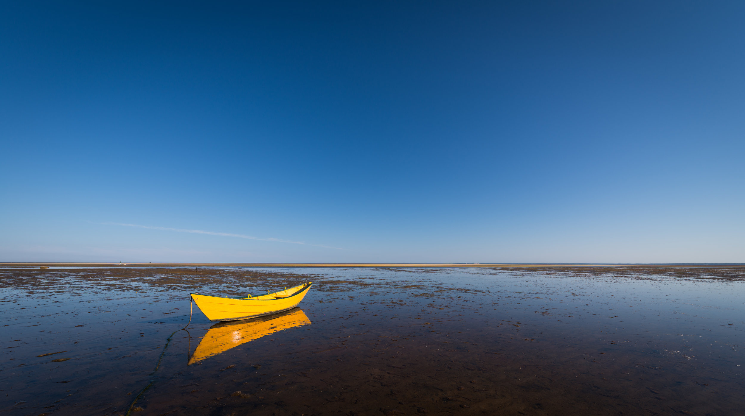 A Yellow Dory in Brewster
