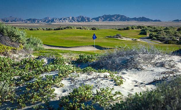 PP golf course 2.jpg