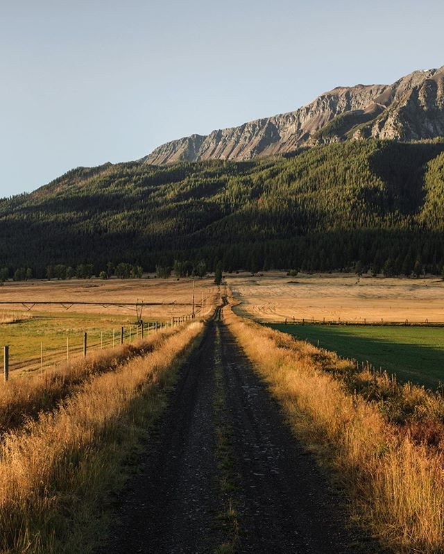 Road to Mt Joseph. Wallowa County. Oregon.
