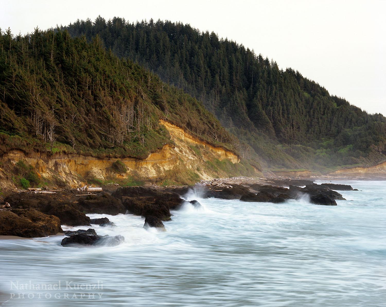 Oregon Coast, April 2007