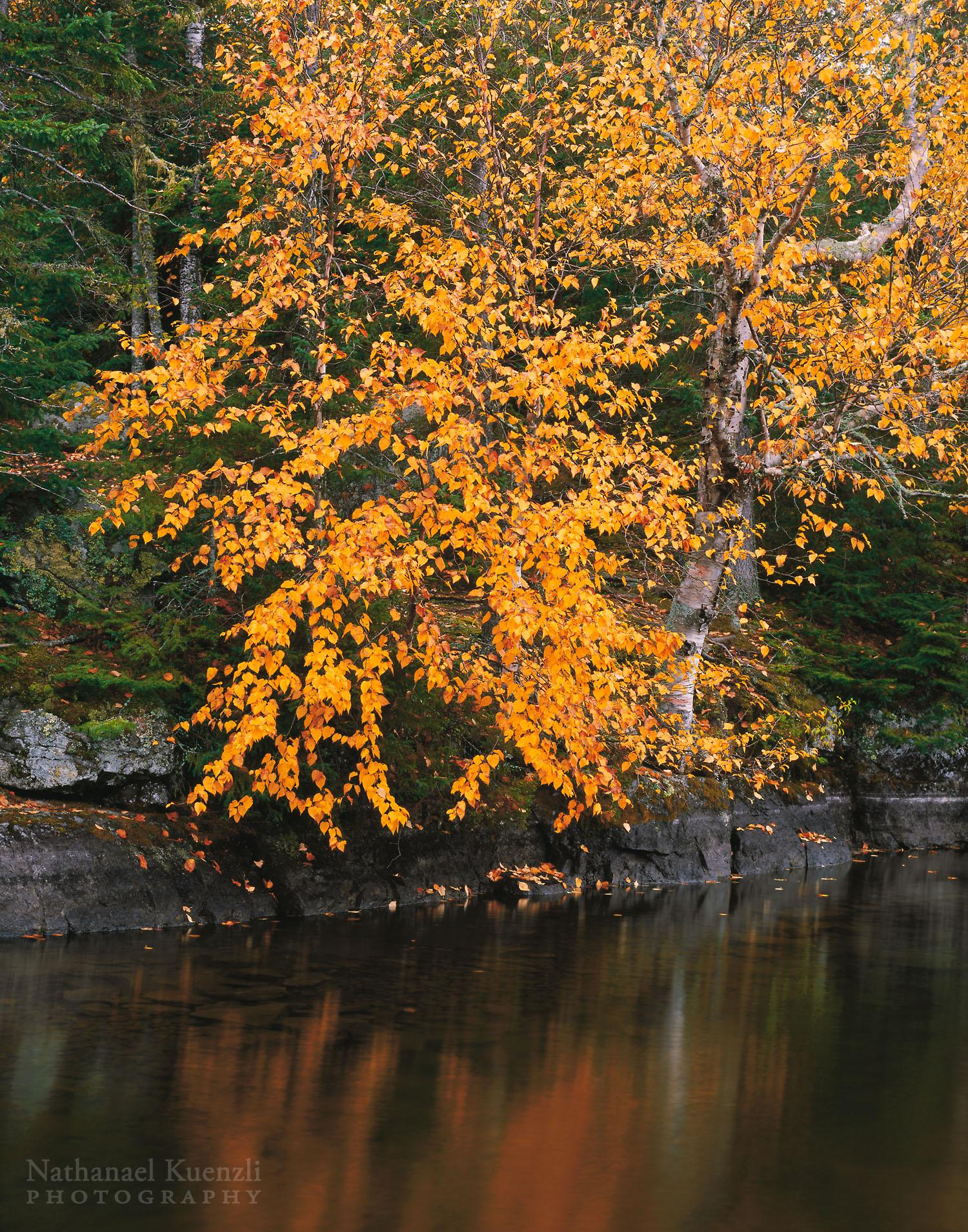 Cherokee Lake, Boundary Waters Canoe Area Wilderness, Minnesota, October 2005