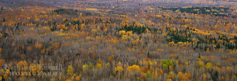 View from Carlton Peak, Temperance River State Park, Minnesota, October 2008
