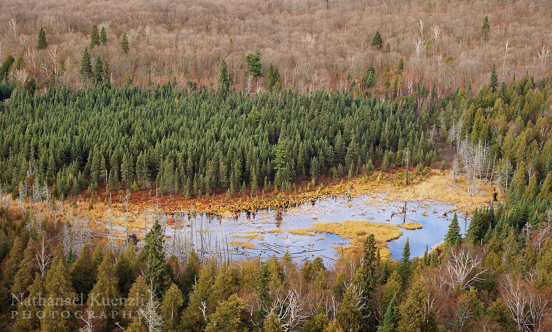 Oberg Wetlands, Superior National Forest, Minnesota, October 2008