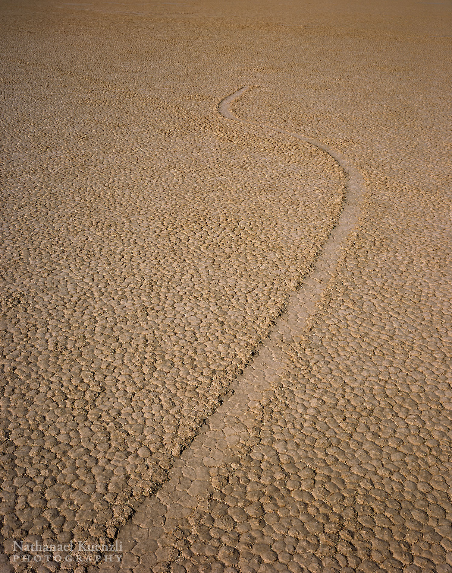Racetrack Playa Detail, Death Valley National Park, California, April 2008