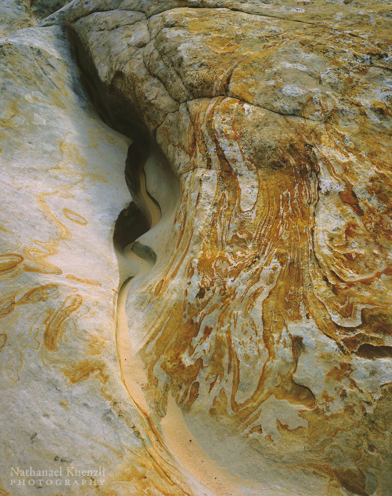 Creek Bottom Detail, Surprise Canyon, Capitol Reef National Park, Utah, May 2005