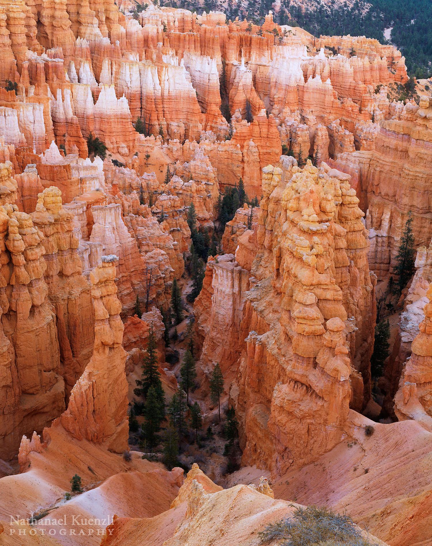 Bryce Canyon National Park, Utah, October 2003