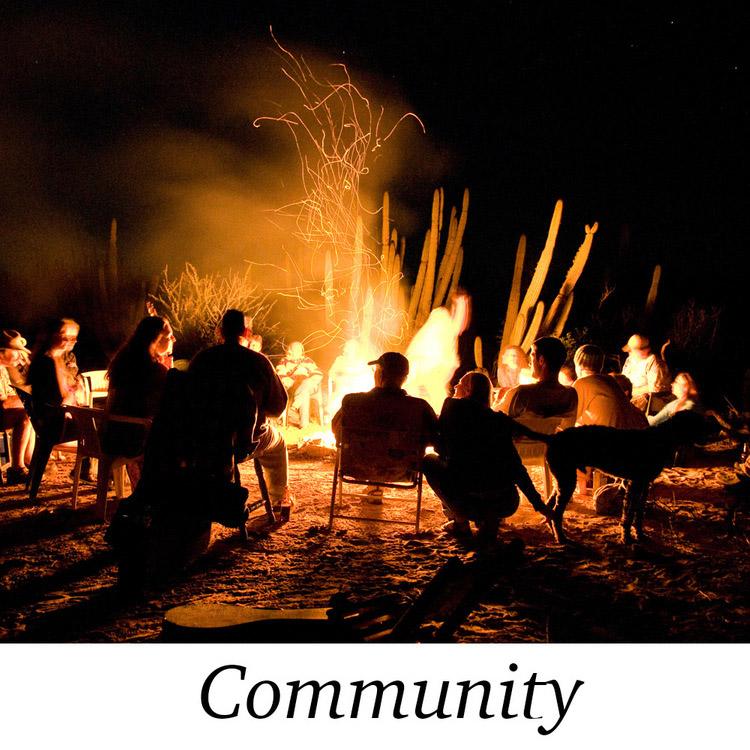 The+Communtiy.jpg