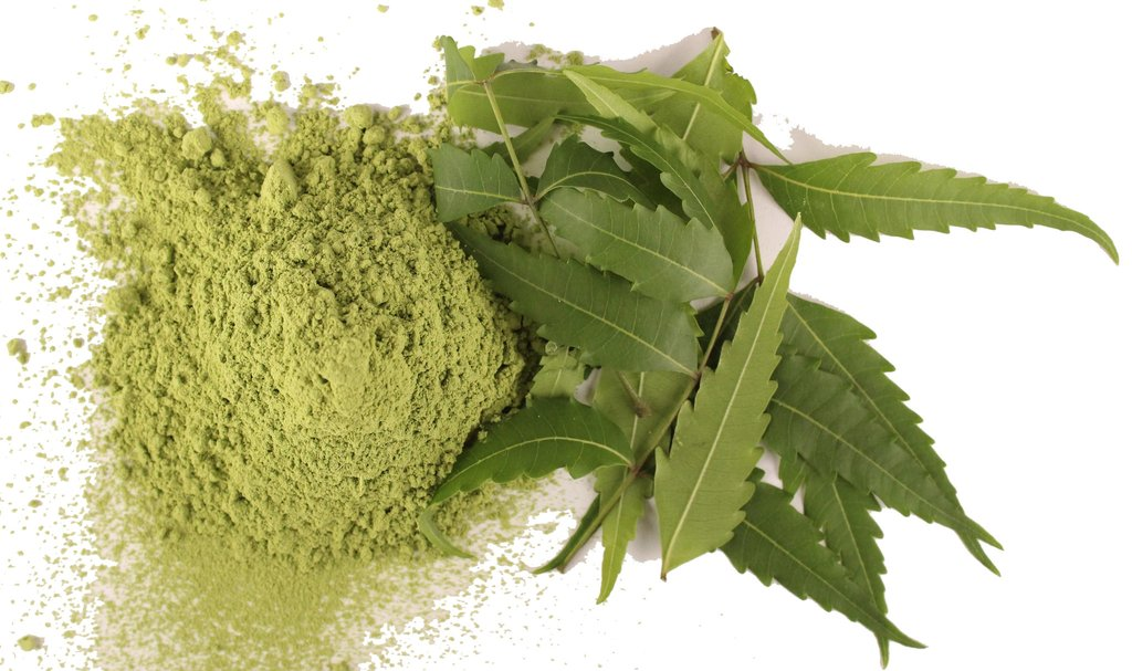 neem powder.jpg