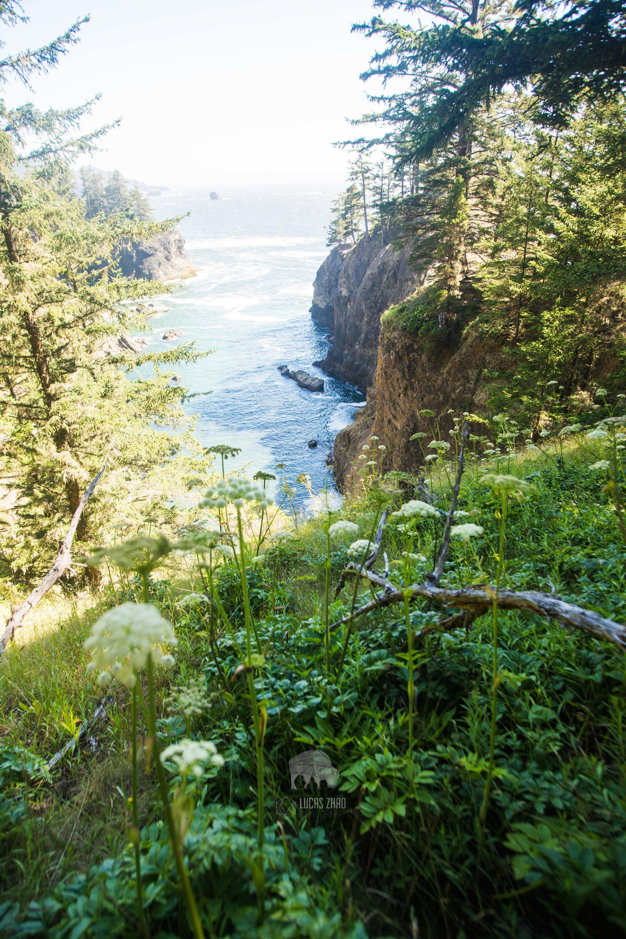 Samuel H. Boardman State Park (Oregon)