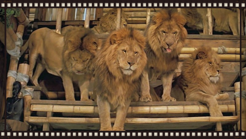The lions of Roar (Image  © Filmways).
