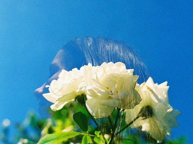 Radha and the flower.. Double exposure on 35mm. #doubleexposure #olympusom1 #kodak #35mm #istillshootfilm