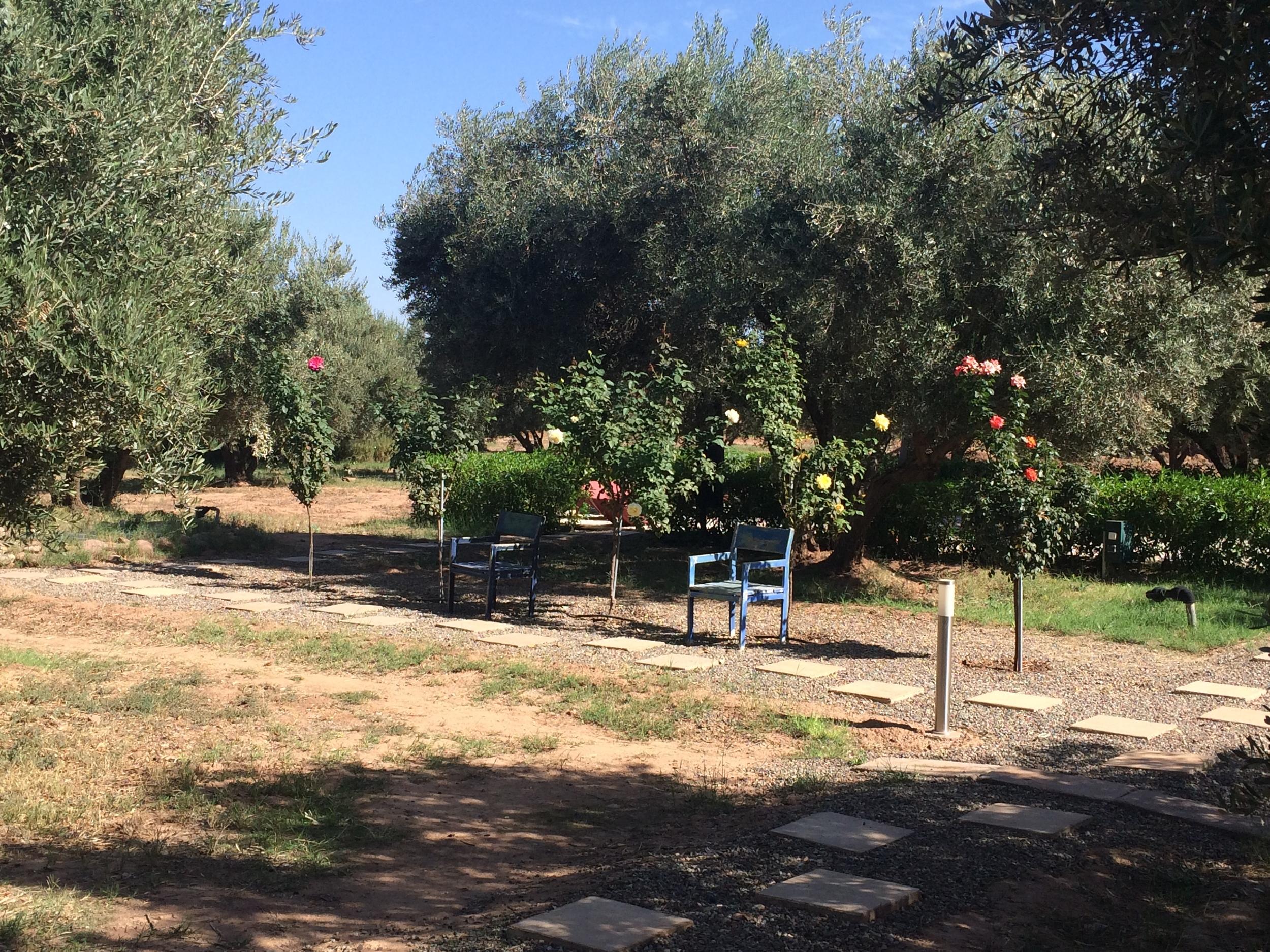 GardensChair.JPG
