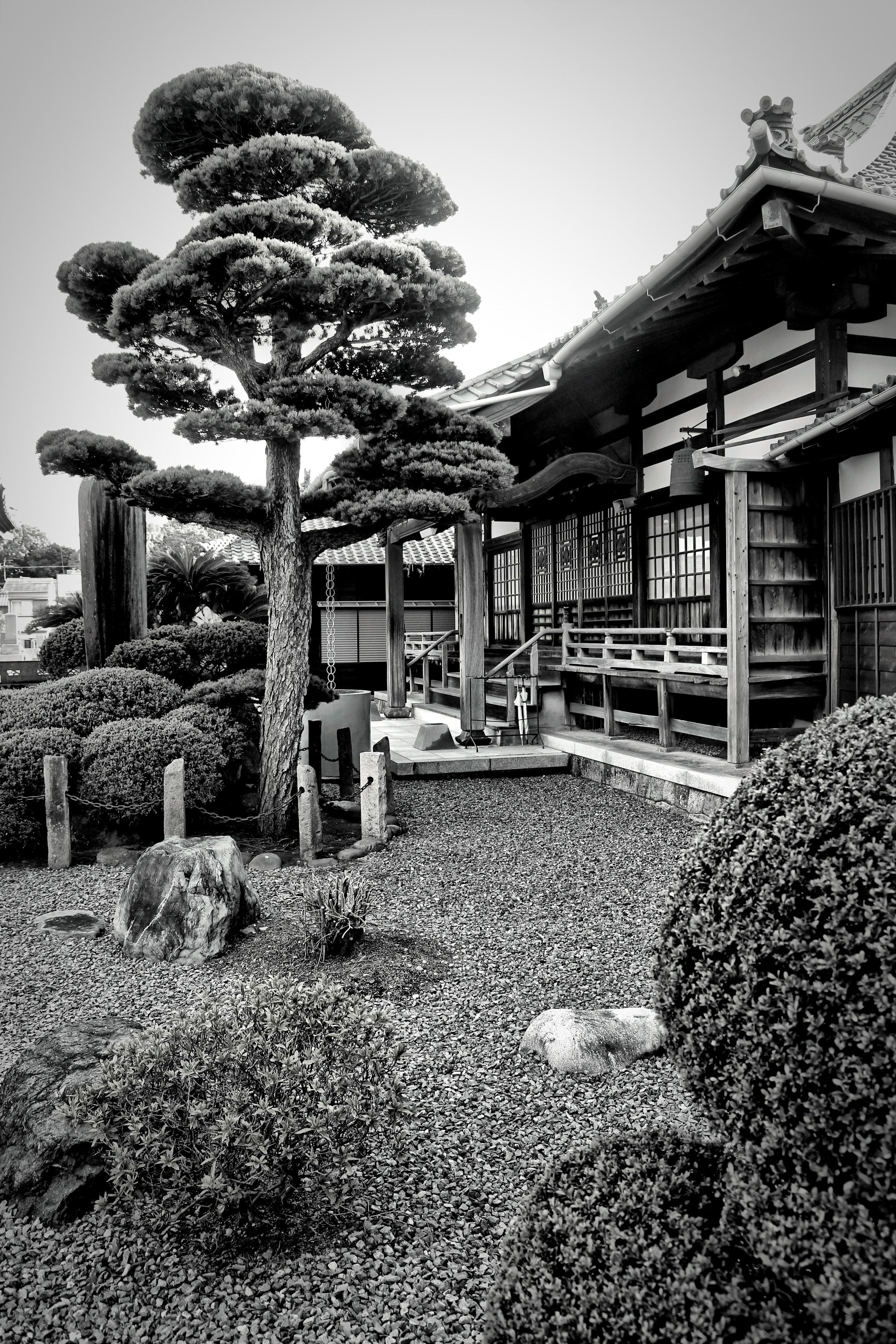 Neighborhood Buddhist Temple  B109