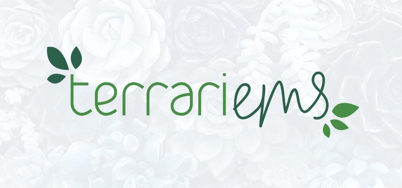"""Terrariems""Custom terrariums by Emily."