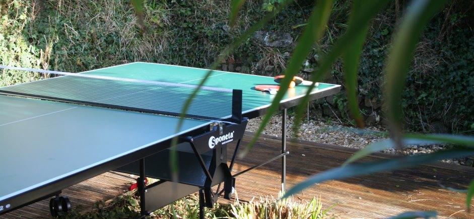 home hero master table tennis.jpg