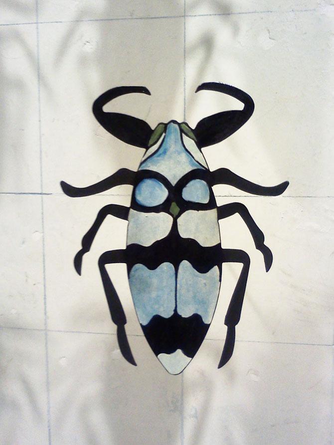 Beetle Smaller.jpg