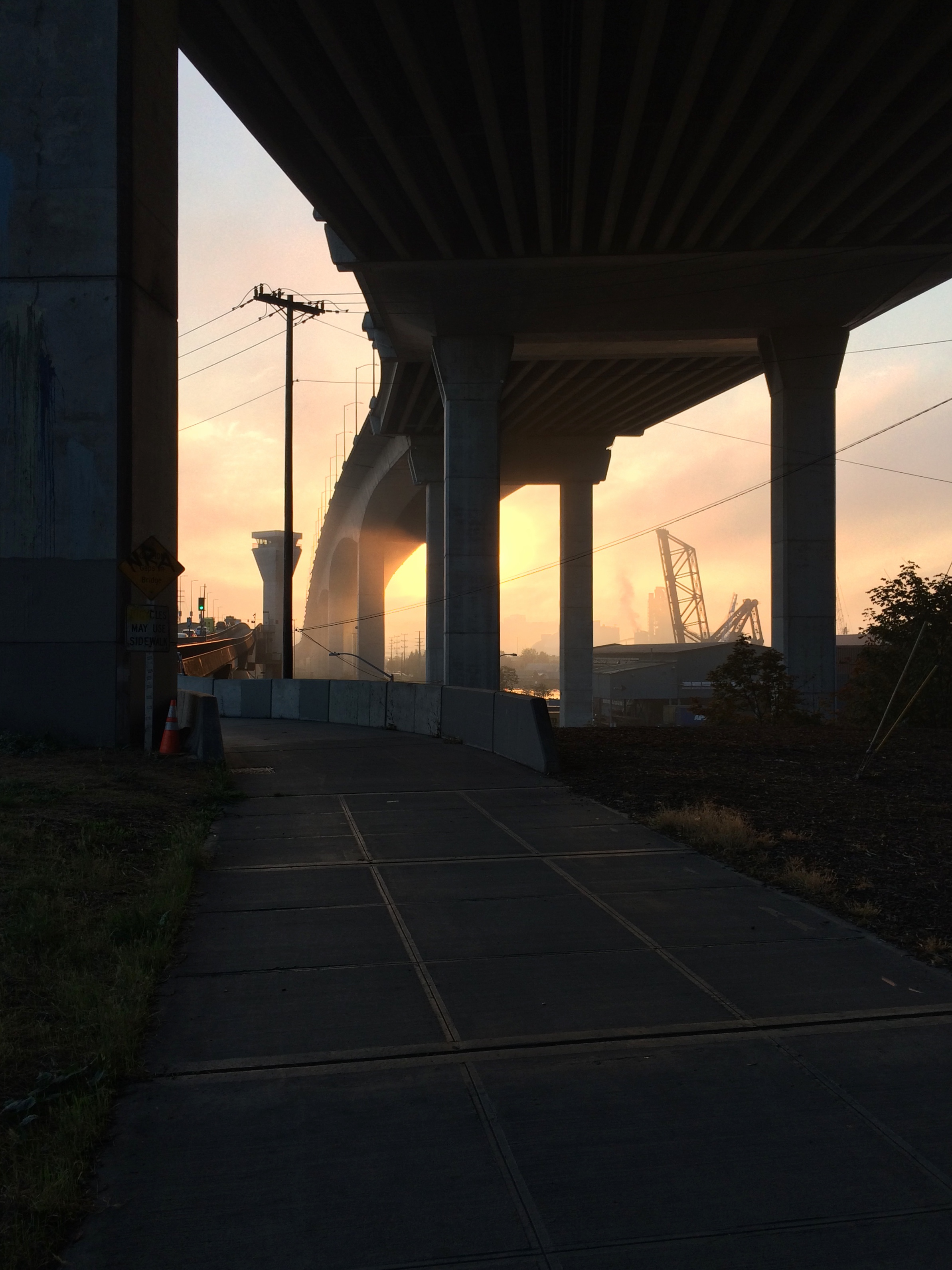 Sunrise at the intersection of the Duwamish Trail and the W. Seattle Bridge Trail.