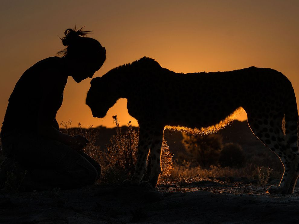 Photo credit: Terry Allen via National Geographic