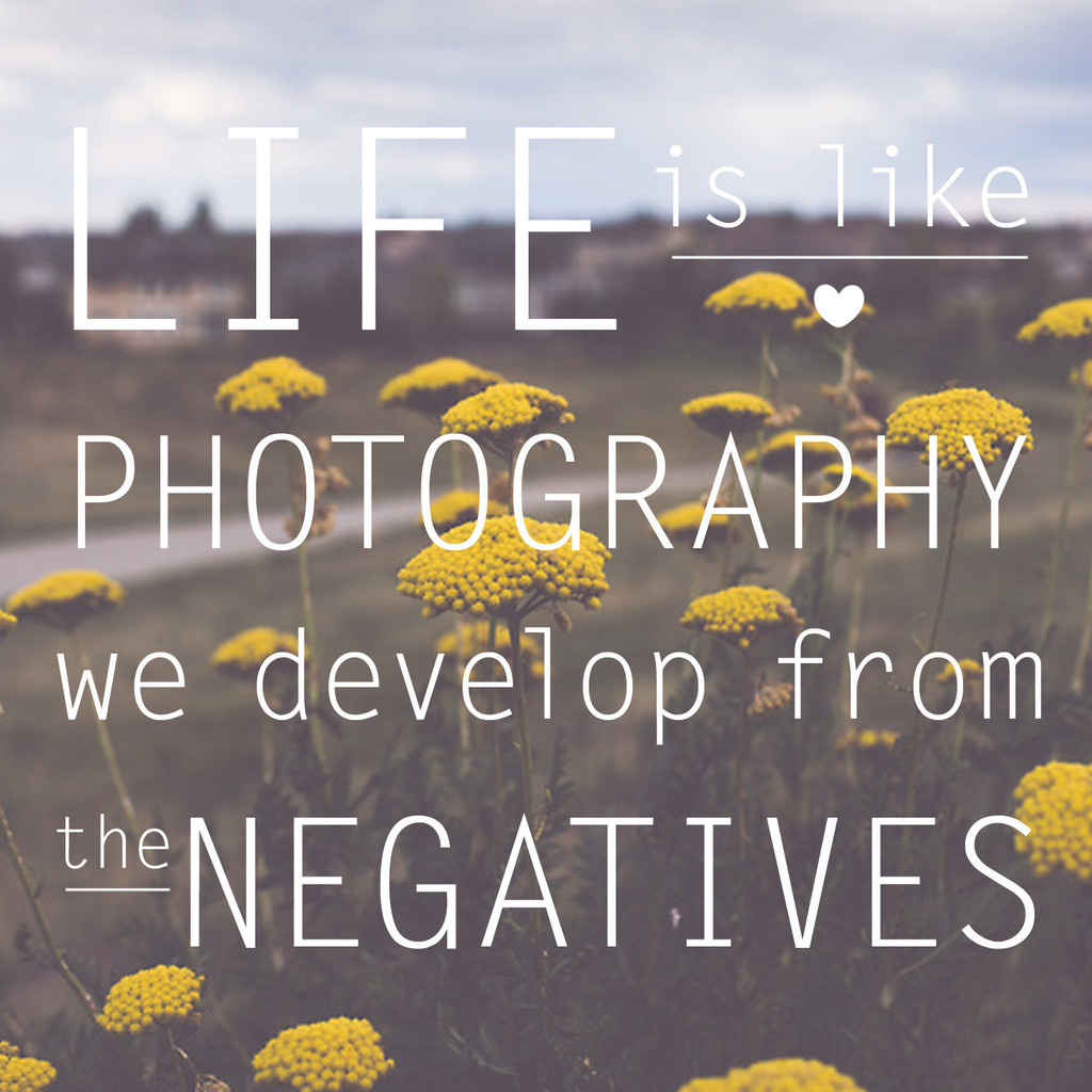 lifeislike_woodsnapflower_1024x1024.jpg