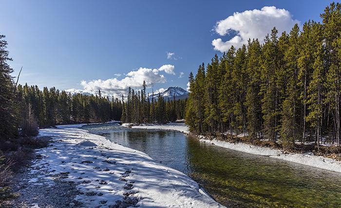 Bow River vista, Banff National Park