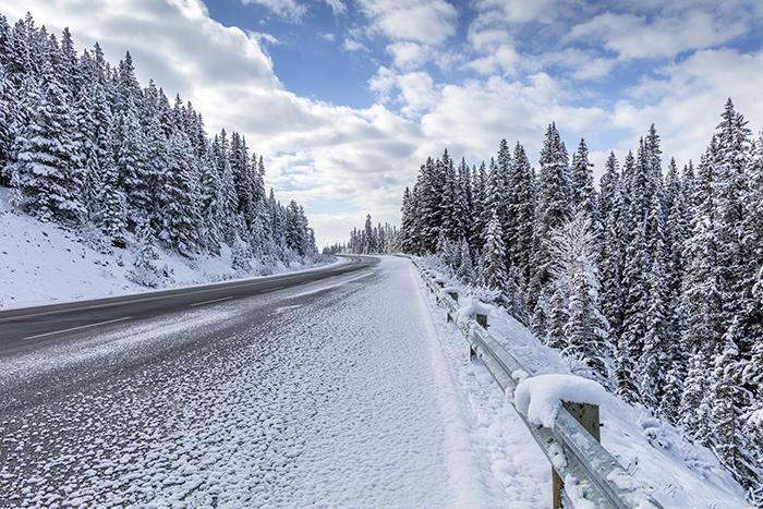 Spring In Banff National Park
