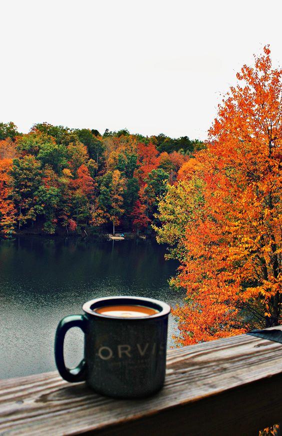 Photo credit: simplytaralynn.com
