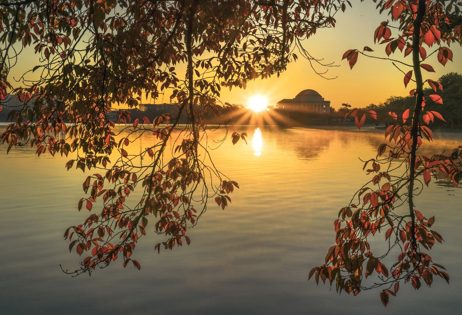 Autumn sunrise at the Tidal Basin with the Jefferson Memorial, November 13, 2016. Photo credit: Kevin Ambrose