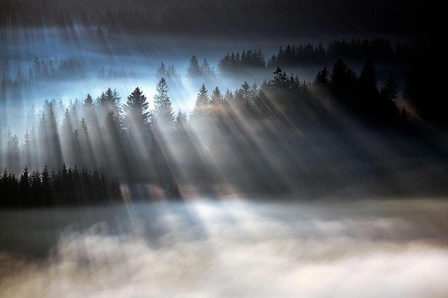 Photo credit:Poland by Artur Magdziarz