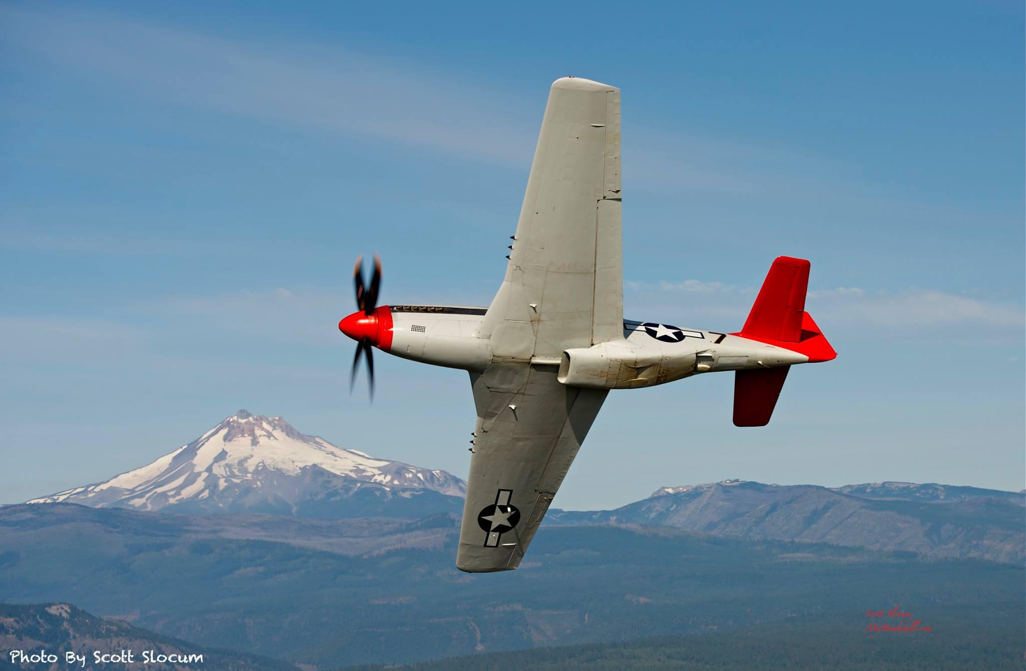 P-51 under.jpg