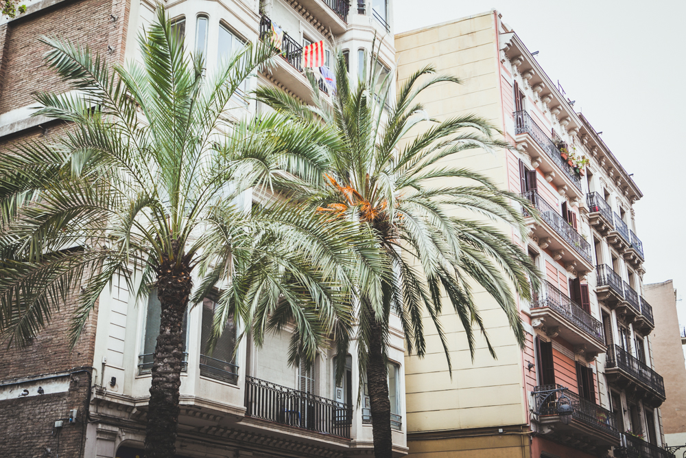 BarcelonaSpain-IMG_9229.jpg